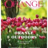 Orange Magazine cover (again)